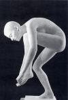 Cinquant'anni di storia dell'arte ferrarese